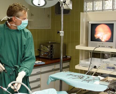 laparoscopie hond